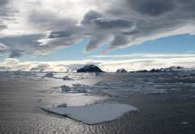 OMM/Gonzalo Javier Bertolotto Quintana: Piezas de hielo flotando en el Canal Príncipe Gustavo, en la Antártida, donde antes existían plataformas de hielo de más de 28 km.