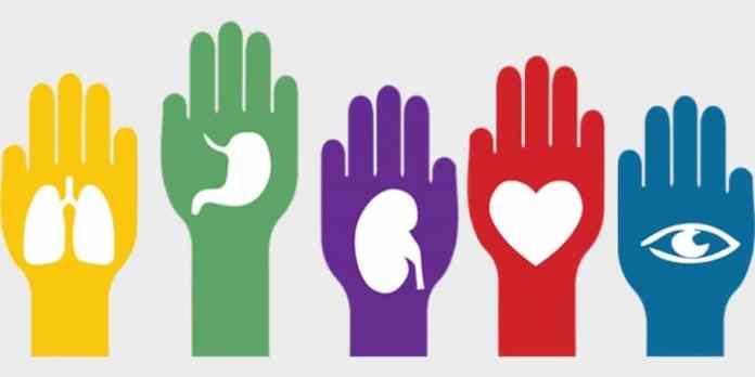 Donaciones de órganos
