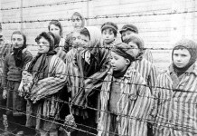 Auschwitz niños supervivientes