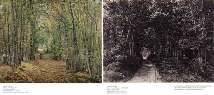 PISSARRO, Camille_El bosque de Marly, 1871_711 (1970.24)