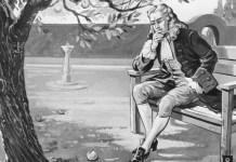 Newton manzana gravedad