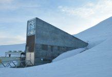 Archivo Mundial del Artico