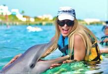 parques acuáticos con delfines