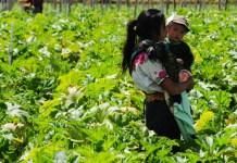 Una campesina con su hijo en una finca guatemalteca © BM