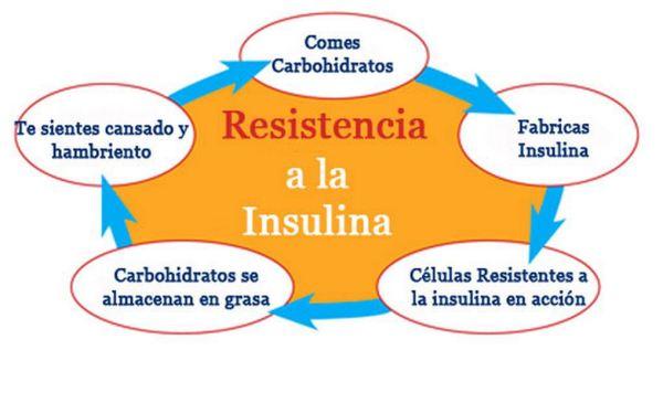 Diabetes Resistencia a la Insulina