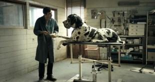 Dogman escena perro