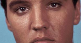 Elvis detalle