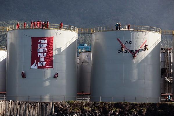 Greenpeace Indonesia Wilmar aceite palma