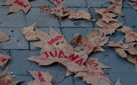 Hojas de la Marcha silenciosa de la Asociación de Mujeres de Guatemala (Pablo Pascual)