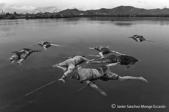 En la fotografía; Imagen que tome en aguas cercanas a Taclobán, durante el periodo que siguió al Tifon Haiyan en las islas Filipinas.
