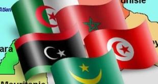 Banderas de países de la UMA