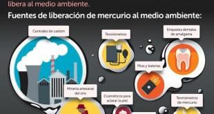 Grupo de Trabajo Mercurio Cero: EBay y Amazon venden cremas tóxicas