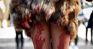 Pamplona asesinato animales