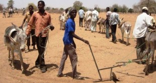 Sudán: El presidente pide la retirada total de la ONU por considerar la zona en paz