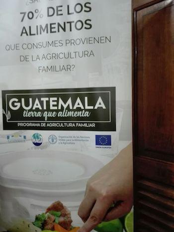 Agricultura-Familiar-Guatemala