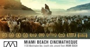 Arreo-Miami-cartel