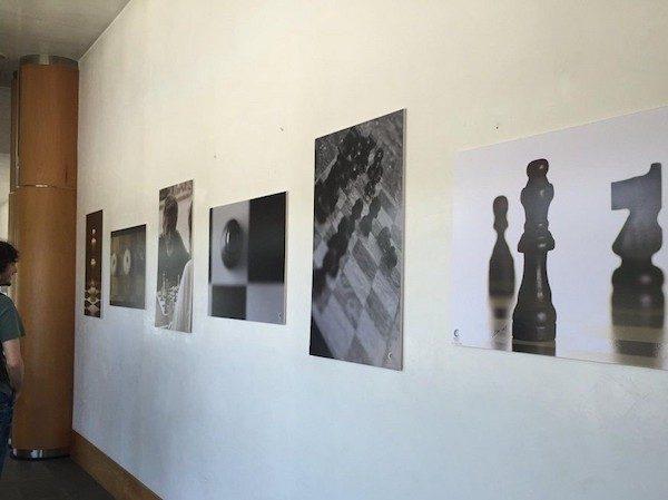 Muestras de fotos en la galería Expochess.