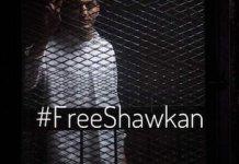 FreeShawkan-enrejado