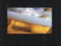 El mundo de la cerveza, portada