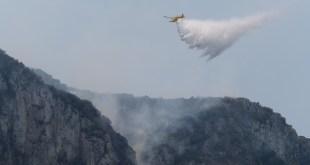Greenpeace alerta de que los grandes incendios forestales afectan a la seguridad nacional