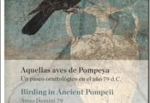 "Portada de ""Aquellas aves de Pompeya"", de Karin Faber"