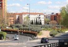 Rotonda de Madrid con olivos