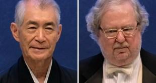 Nobel de Medicina: la clave está en el sistema inmunitario