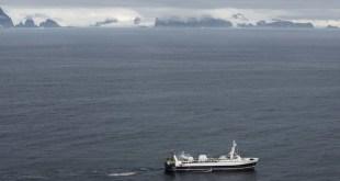 España apoya el santuario antártico para pingüinos, focas y ballenas