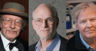 Nobel a los descubridores de los mecanismos que regulan ritmos circadianos