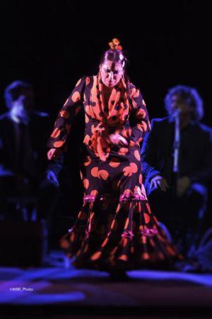 Flamenco Monumental. La Moneta. Foto Manuel Rodriguez