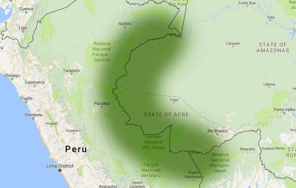 La Frontera amazónica de los no contactados, es una extensa región a caballo entre las fronteras de Perú y Brasil, que habita la mayor concentración de pueblos indígenas aislados del mundo. © Survival
