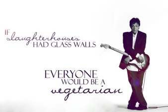 Beatle_Quote_Wallpaper__Paul_by_hailingxjove