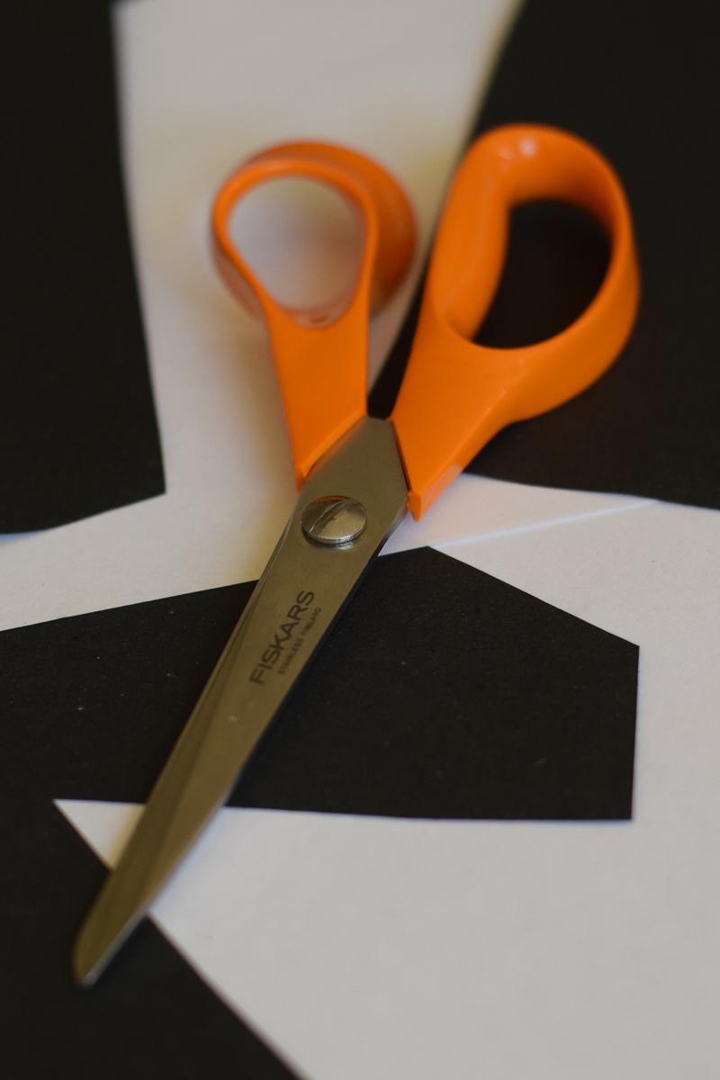 Fiskars Scissors Portrait