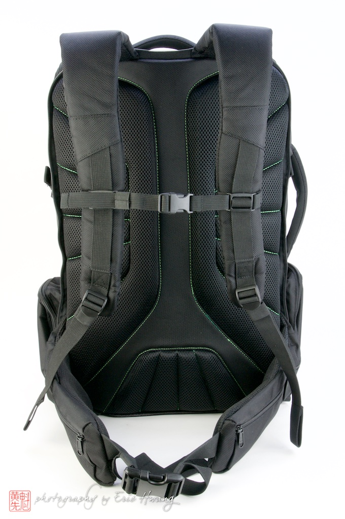 Rear of pack showing straps and hip belt
