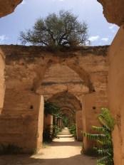 Meknes 12,000 horse stable