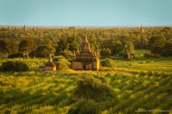 Birmanie (1518)-Modifier-85