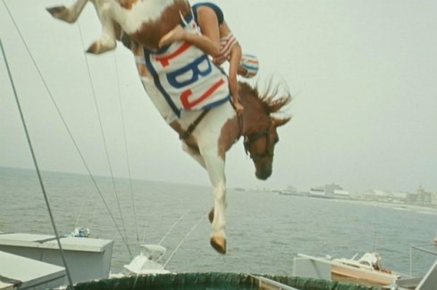diving-horses-size