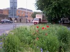 St Stephens Square