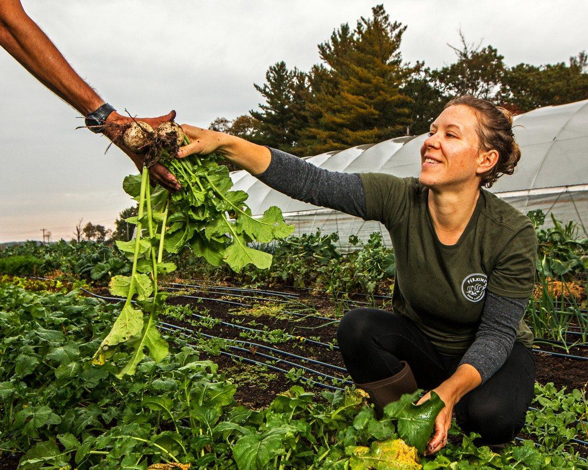 Dan and Julie harvesting together