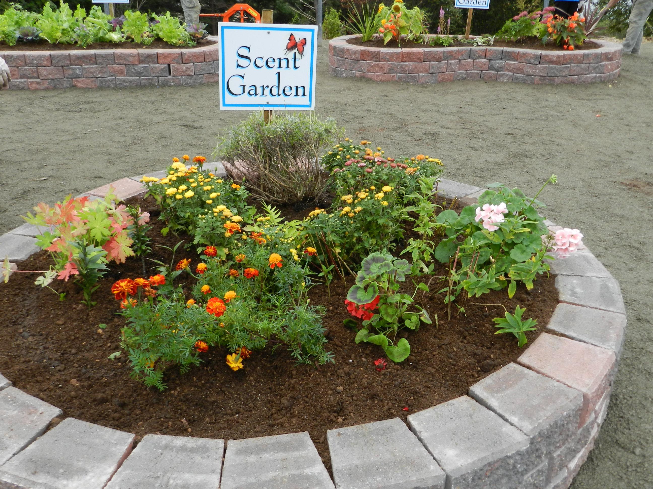 Scent Garden Sensory Garden Ideas Pinterest Sensory Garden