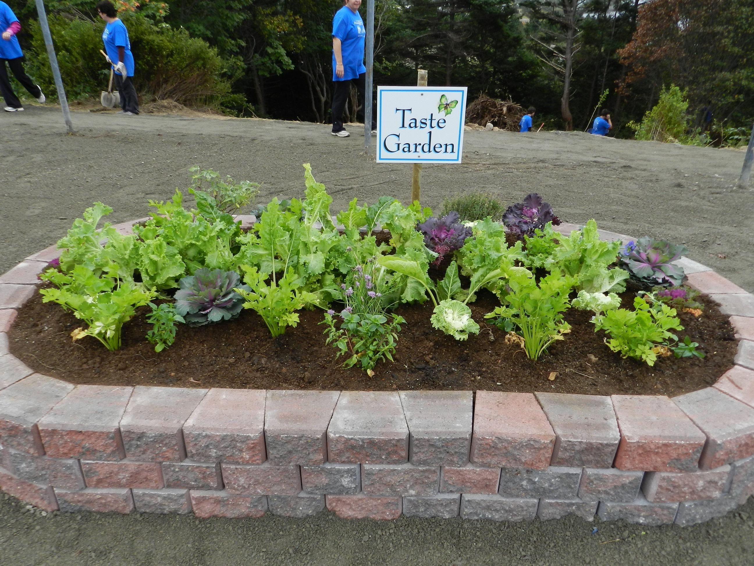 Sensory Taste Garden Sensory Garden Ideas Pinterest Gardens
