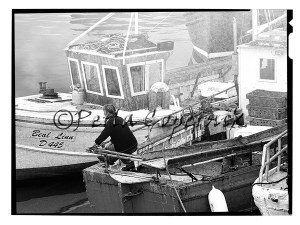 Fisherman calling a  colleague, Howth, Ireland
