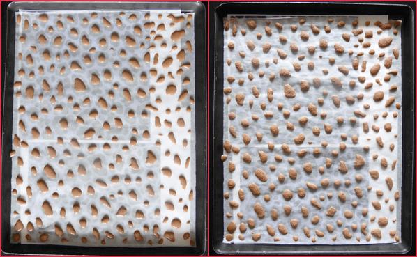 gRoulé léopard ou léopard roll cake