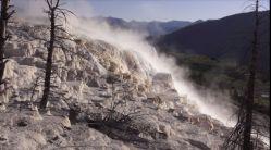 Gorące źródła Yellowstone i ptaki