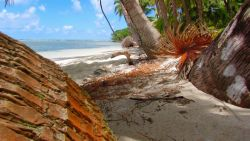 Piękna karaibska wysepka