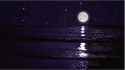 Zwiedzamy wielu cudownych karaibskich plaż, w tym jedną w środku nocy!