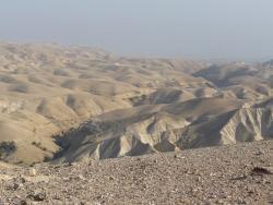 Humor ojców pustyni  –  zagrane w naturalnym środowisku :)