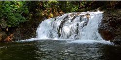 Średni wodospad na strumyku w lesie – mocno szumi:)