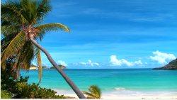 Łagodna egzotyka:) Leniwe morze:)
