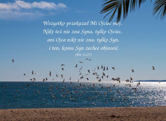 W owym czasie Jezus przemówił tymi słowami…